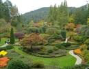 Những khu vườn Xuân đẹp nhất thế giới