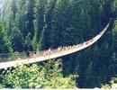 Top những cây cầu đáng sợ nhất thế giới