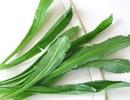 """Báo Pháp """"giải mã"""" vị ngon đặc trưng riêng của món ăn Việt"""
