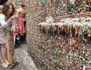 """Độc đáo bức tường """"kẹo cao su"""" tại Mỹ"""