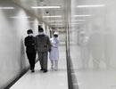 Người lớn tuổi có nhiều nguy cơ nhiễm vi-rút H7N9