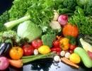 Thực phẩm giúp giảm nồng độ axit uric trong máu