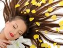 6 mặt nạ dưỡng tóc mùa hanh khô