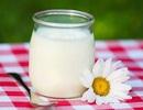 Sữa chua và những điều bạn chưa biết
