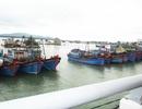 """Hàng loạt tàu thuyền nằm bờ vì """"khát"""" lao động đi biển"""