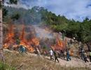 Hàng chục hecta rừng keo 2 lần phát hỏa