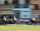 Ấn tượng trường đua ngựa của những chàng nông dân vùng cao