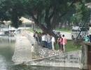 Phát hiện xác người nổi trên hồ trong công viên Thống Nhất