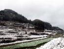 Tuyết rơi phủ trắng Cao nguyên đá Đồng Văn