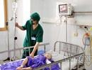 Một bé trai 28 tháng tuổi bị gấu cắn đứt lìa cánh tay