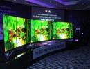 TV OLED cong đầu tiên trên thế giới về Việt Nam