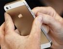 Apple rậm rịch mua lại công ty sản xuất chip đồ họa Renesas
