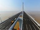 Trung Quốc có cầu dây văng dài nhất thế giới