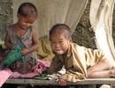 Số phận những đứa trẻ miền rừng có cha mẹ chết bằng lá ngón