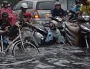 Sài Gòn mùa này phố cũng như sông!