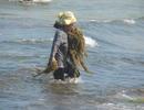 Cả ngày lội biển mò rong giữa cái nắng 40 độ C
