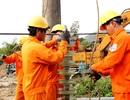 Mùa Xuân đầu tiên đảo Lý Sơn hòa điện lưới quốc gia