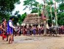 Quy hoạch xây dựng làng truyền thống Cơtu phục vụ du lịch