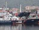 Cùng Dân trí tiếp sức ngư dân bám biển