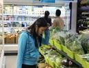 Sự thật kinh hoàng về rau an toàn bán ở các siêu thị Hà Nội