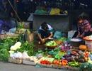 Hà Nội: Rét đậm, giá rau vọt tăng gấp 4 lần