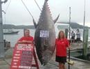 Bắt được cá ngừ khổng lồ trị giá 2 triệu USD