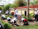 120 lãnh đạo doanh nghiệp ngoại quốc tham gia trồng cây tại Việt Nam