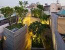 House for trees – Không gian xanh lý tưởng để sống