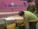 Thu hơn 1 tấn nầm lợn bốc mùi hôi thối trên đường tiêu thụ