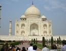 Tìm ra nguyên nhân khiến đền Taj Mahal bị ố vàng