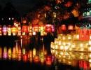 Việt Nam là điểm đến lý tưởng dành cho các cặp đôi vào mùa Xuân