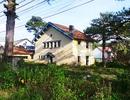 Hàng loạt biệt thự bỏ hoang giữa trung tâm thành phố Đà Lạt