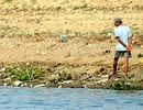 Hàng chục tấn cá chết trắng mặt hồ