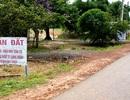 Ồ ạt rao bán đất ven dự án sân bay Long Thành