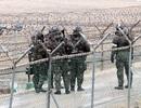 """Lính Hàn Quốc ném lựu đạn vào """"vật thể"""" ở biên giới"""