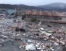 Hãi hùng video mới về sóng thần Nhật Bản