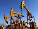 Giá dầu thế giới tăng mạnh nhất trong 6 năm