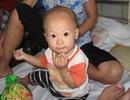 Bé trai 10 tháng tuổi bị rắn lục cắn