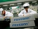 Thu hồi dự án 200 triệu USD của Foxconn