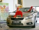 GM Việt Nam triệu hồi hơn 4.300 chiếc Chevrolet Cruze