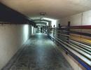 Những đường hầm bí mật ở Đà Lạt