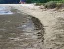 Dân bất an vì nguy cơ sạt lở bờ biển