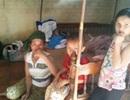12 năm về vùng đất mới, vẫn chìm trong đói nghèo!