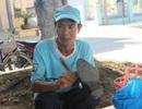 Ông bố nghèo tranh thủ đánh giày cho khách trong lúc chờ con thi