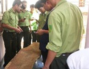 Đình chỉ công tác 15 ngày đối với 2 cán bộ kiểm lâm lấy gỗ sưa
