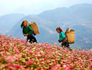 Việt Nam sẽ xuất hiện nhiều hơn trong phim Mỹ