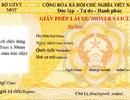Đổi giấy phép lái xe không cần giấy khám sức khỏe