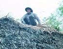 Người đàn ông hơn 40 năm đan mái tranh lợp nhà Bác Hồ