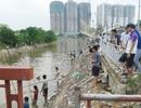 Nhộn nhịp cảnh đánh bắt cá trên sông Tô Lịch