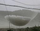 Người dân lao đao sau trận mưa đá dữ dội